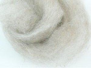 画像1: ナチュラルカラー羊毛 「NZライト」  (1)