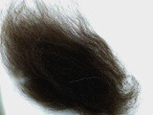 画像1: ブレンド素材「ストロング  ブラック系」太い繊維 (1)