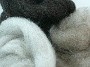 画像1: お試しセット ナチュラルカラー羊毛「NZ3色セット」 (1)